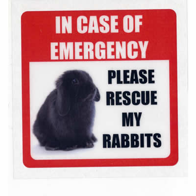 ro-wint08-shop-in-case-of-emergency-sticker