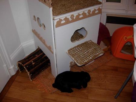 thalia cabane. Black Bedroom Furniture Sets. Home Design Ideas