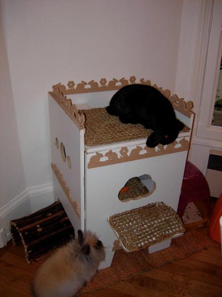 une cabane pour les lapins comportement du lapin de compagnie. Black Bedroom Furniture Sets. Home Design Ideas